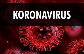 Türk Tabipleri Birliği İlk 2 Hafta Koronavirüs İçin Önemli