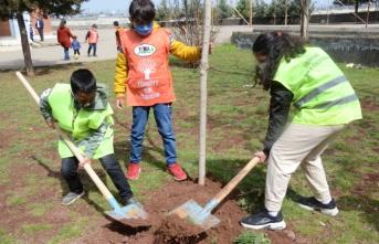 Öğrenciler okul bahçesine ağaç dikti