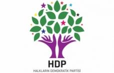 HDP Siverek Belediye Başkan adaylarını belirledi