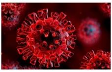 Kulis: Yeni Koronavirüs önlemleri yolda, 'aç-kapa' taktiği uygulanacak