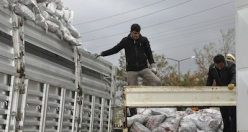 Siverek'te 5000 Aileye Kömür Yardımı