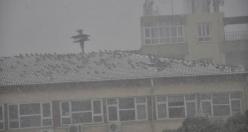 Siverek'te Etkili Kar Yağışı