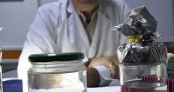 Kavanoza da bulunan fetüslerle hastalarını bilgilendiriyor