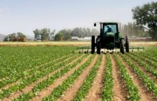 Erdoğan imzaladı: Sözleşmeli tarım yapan çiftçiye...