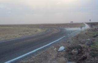 Kaç kişi öldükten sonra Siverek-Viranşehir karayolu...