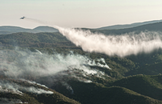 Orman yangınlarında 13. gün: 2 ilde 5 noktada yangınlar...