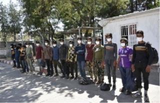 Siverek'te 22 kaçak göçmen yakalandı!