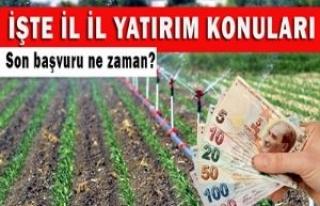 Tarım Bakanlığı'ndan yatırımcıya 2 milyon...