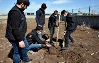 Servis çalışanları köy okulunu ağaçlandırdı
