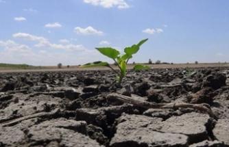 Uzmanlardan kuraklık uyarısı: Türkiye'de su açığı yüzde 60; önümüzdeki 10 yıllık süreçte su krizi yaşanacak