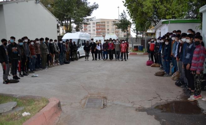 Siverek'te 101 yabancı uyruklu kaçak göçmen yakalandı