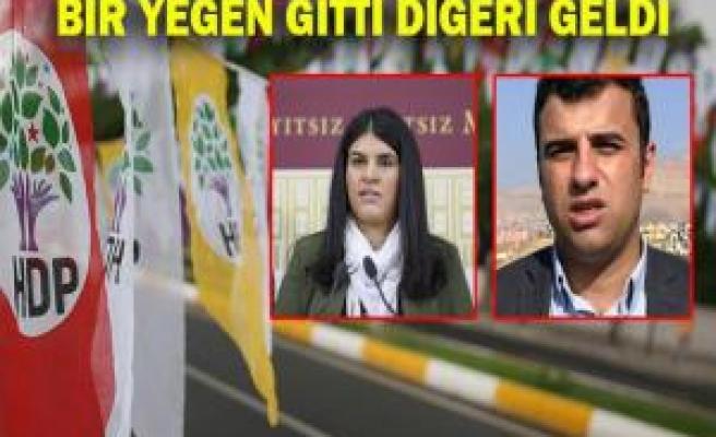 HDP Şanlıurfa aday listesi'nde 'Öcalan' var