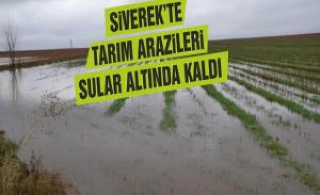 Siverek'te tarım arazileri sular altında kaldı