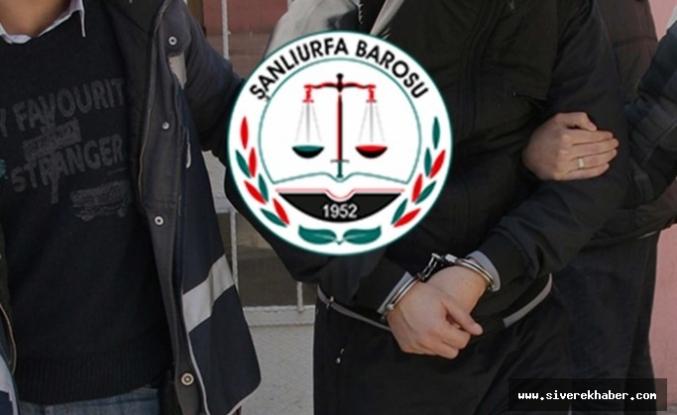 Urfa Barosu'ndan 'gözaltı' açıklaması