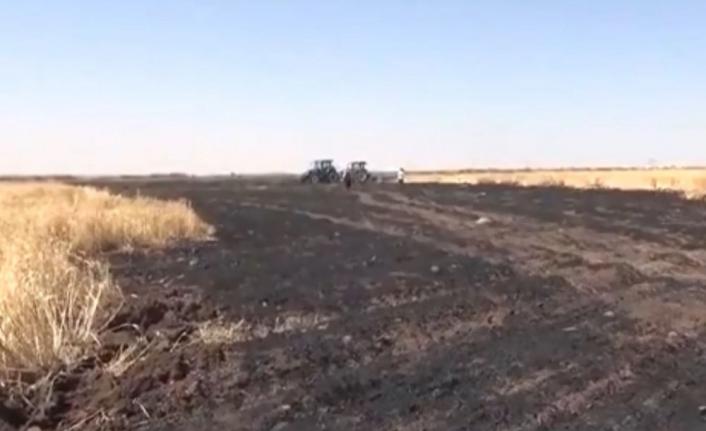 Siverek'te 40 dönümlük buğday ekili alan kül oldu